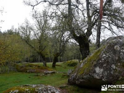 Lagunas de Neila;rutas en madrid sierra oeste de madrid senderismo singles